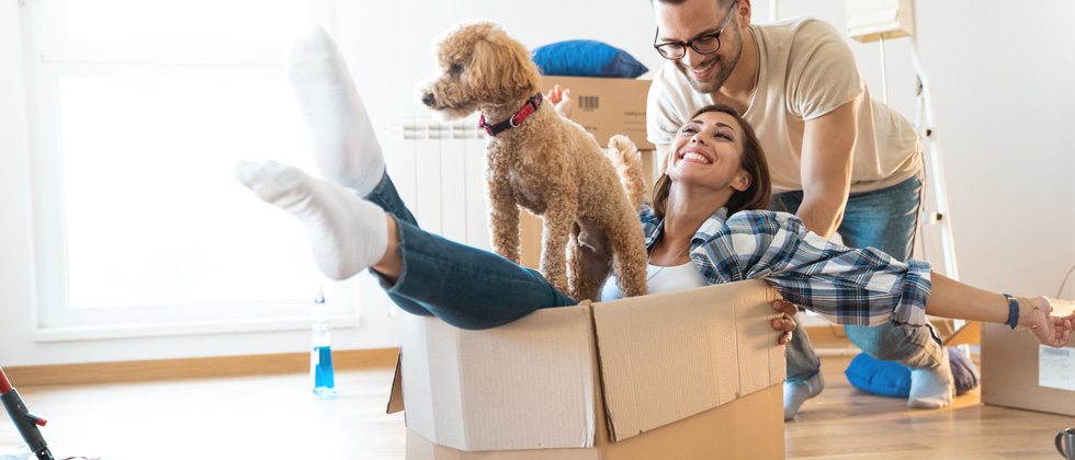 Woman in a moving box with her dog on her lap as her boyfriend pushes her