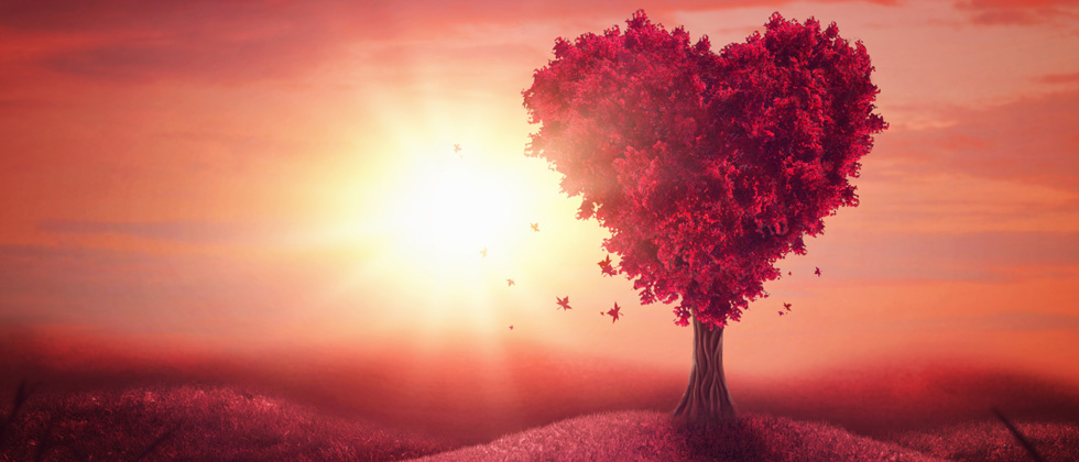 A red tree shaped like a heart standing alone with a pink sky background