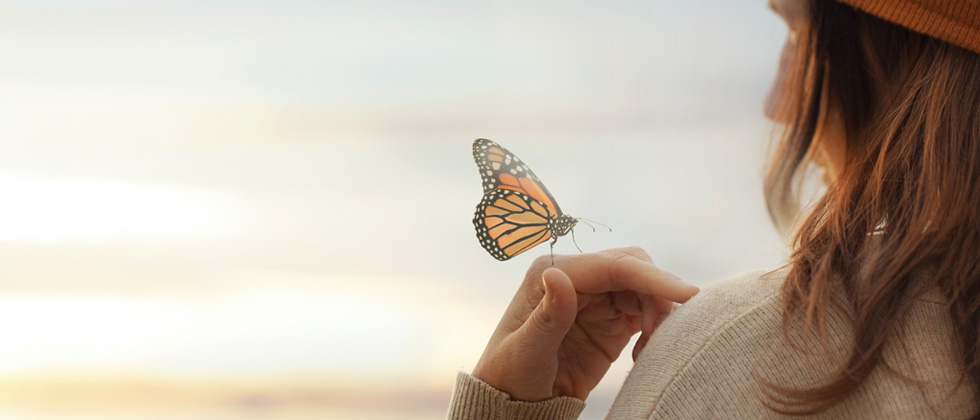 A butterfly landing on a woman's hand at the beach
